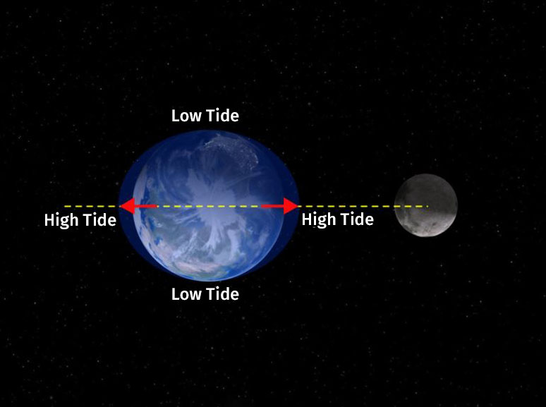 terrestrial planets have moons - photo #39